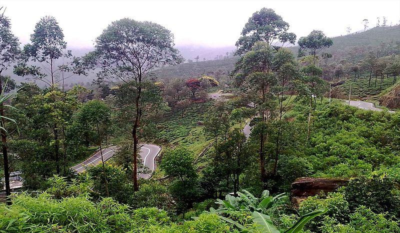 File:Nuwara eliya road.jpg