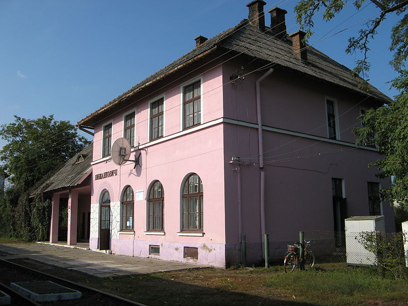 Файл:Nyzhankovychi, Ukraine (Train station)-4.JPG