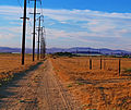Old country road (3363940784).jpg
