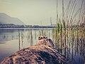 Old times lake.jpg