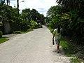 Olive Road, Davao City - panoramio.jpg