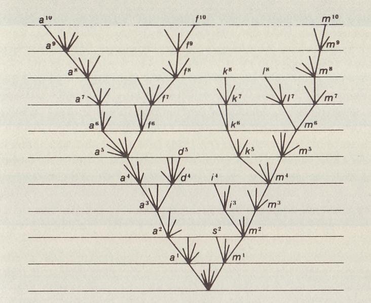 File:Origin of Species illustration cropped.png