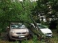 Orkan Ksawery Poznan Piatkowo JIII sob.jpg