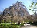Orléans - parc Pasteur (08).jpg