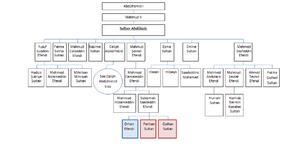 Osmanoğlu family - Line of descent from Sultan Abdulaziz