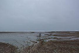 Pêche à Pied Oléron 02.JPG
