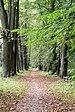 PL - Dukla - palace park - Kroton 004.JPG