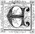 PL Juliusz Verne - Czarne Indje page 213b.png