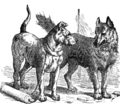 Page 87 illustration to Three hundred Aesop's fables (Townshend).png