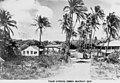 Palm Avenue, Eimeo, 1950.jpg