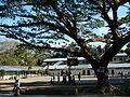 Pantabangan,NuevaEcijajf0319 12.JPG