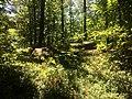 Parco Sacro Monte2.jpg