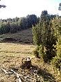 Pargua - panoramio.jpg