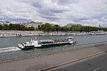 Paris-pont-d'Alma 03.jpg