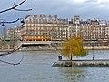 Paris 75001 Square du Vert-Galant 20111229 (01).jpg