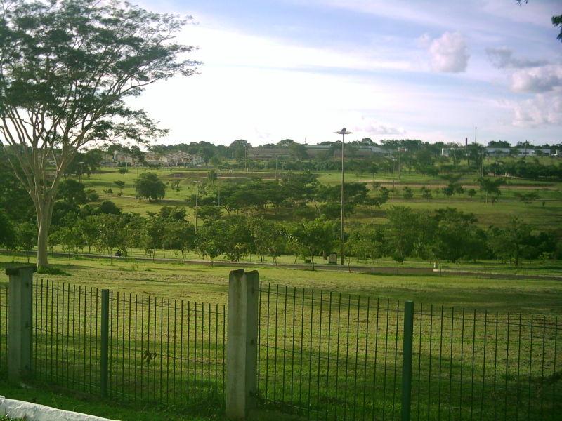 Ficheiro:ParqueNaçõesIndígenasIII.JPG