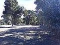 Parque del rio9.jpg