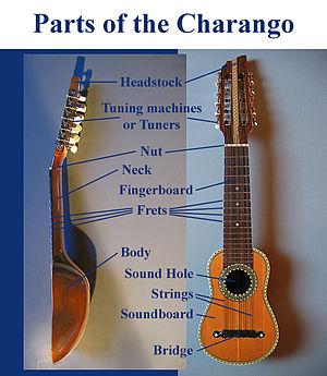 Charango - Designation of the parts of the charango