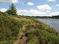 Path by Fernworthy Reservoir - geograph.org.uk - 897306.jpg