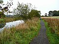 Path by the Forth and Clyde Canal - geograph.org.uk - 1006319.jpg