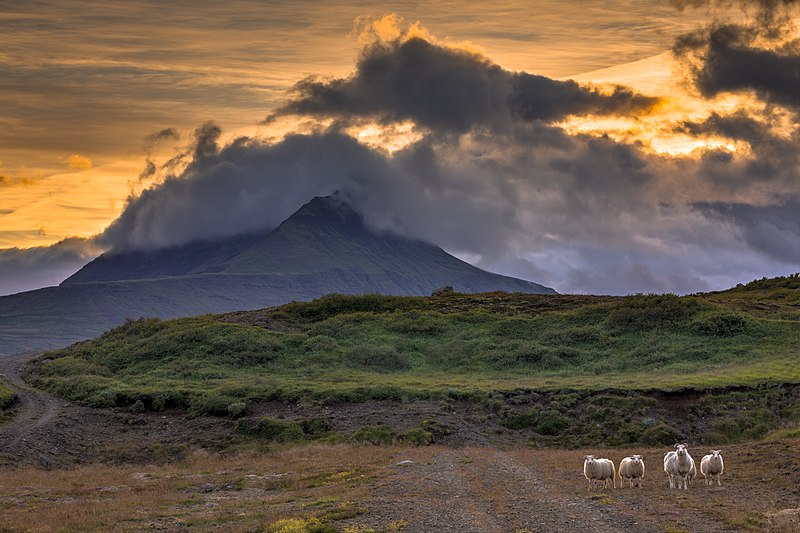 East Iceland, Best Stays in Iceland