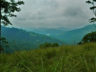 Periyar National Park - The misty mountain ranges of the Periyar region