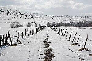 Pešter - Image: Pester Plateau in Serbia 1128