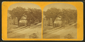 Phoenix Mill, Peterborough, N.H, from Robert N. Dennis collection of stereoscopic views.png