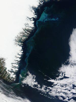 King Frederick VI Coast - Satellite picture of King Frederick VI Coast.