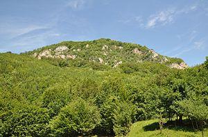 Piatra Roșie Dacian fortress - The hill fort