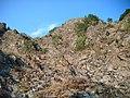 Piatra coziei - panoramio.jpg