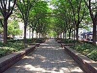 Piatt-Park-3.jpg