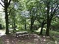 Picnic area in Deerpark Wood - geograph.org.uk - 492551.jpg