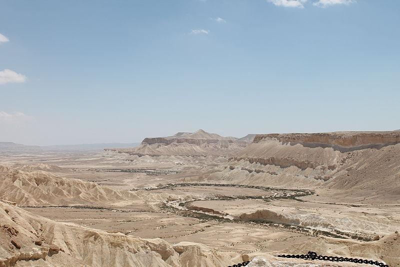 נחש המדבר