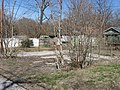 Pine Street North 215 lawn, Bloomington West Side HD.jpg