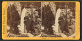 Piwyac, or the Vernal Fall, 300 feet from the cliff, Yosemite Valley, Mariposa County, Cal, by Watkins, Carleton E., 1829-1916.png