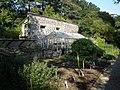 Plant nursery, Cotehele gardens - geograph.org.uk - 978364.jpg