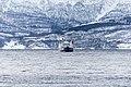 Polarlicht-Reise 2013 - Tag10 - 41.jpg