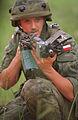 Polish AKMS.JPEG