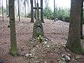 Pomník letce v lese severozápadně od Církvic (Q107162417) 01.jpg