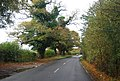 Powdermill Lane - geograph.org.uk - 1576622.jpg