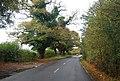 Powdermill Lane - geograph.org.uk - 1576622.jpg