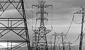 Power lines (8618709561).jpg