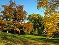Praha, Smíchov, Kinského zahrada, podzim.jpg