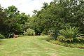 Pretoria Botanical Gardens-047.jpg