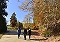 Promenade automnale (22188435173).jpg