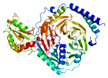 Protein GNB4 PDB 1a0r.png