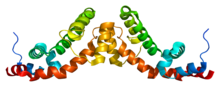 Protein RGS7 PDB 2a72.png