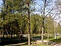 Rajakentäntie 01280 Vantaa Finland - panoramio (1).jpg