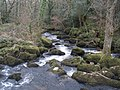 Rapids, on the River Bovey, at Foxworthy Bridge - geograph.org.uk - 1195650.jpg